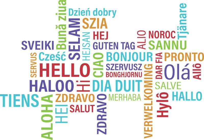 سایت چند زبانه وردپرس